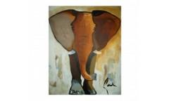 Elephant Colour 80x100 mohd